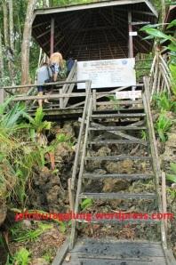 Jalan Masuk di Pulau Kakaban